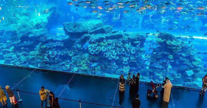 Aquarium in Dubai