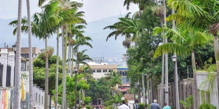 San Jose greenery, costa Rica