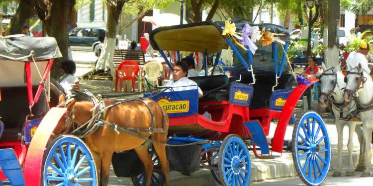 horse carriages Granada
